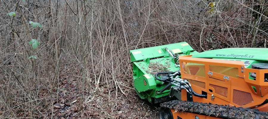 Odstraňovanie náletových drevín